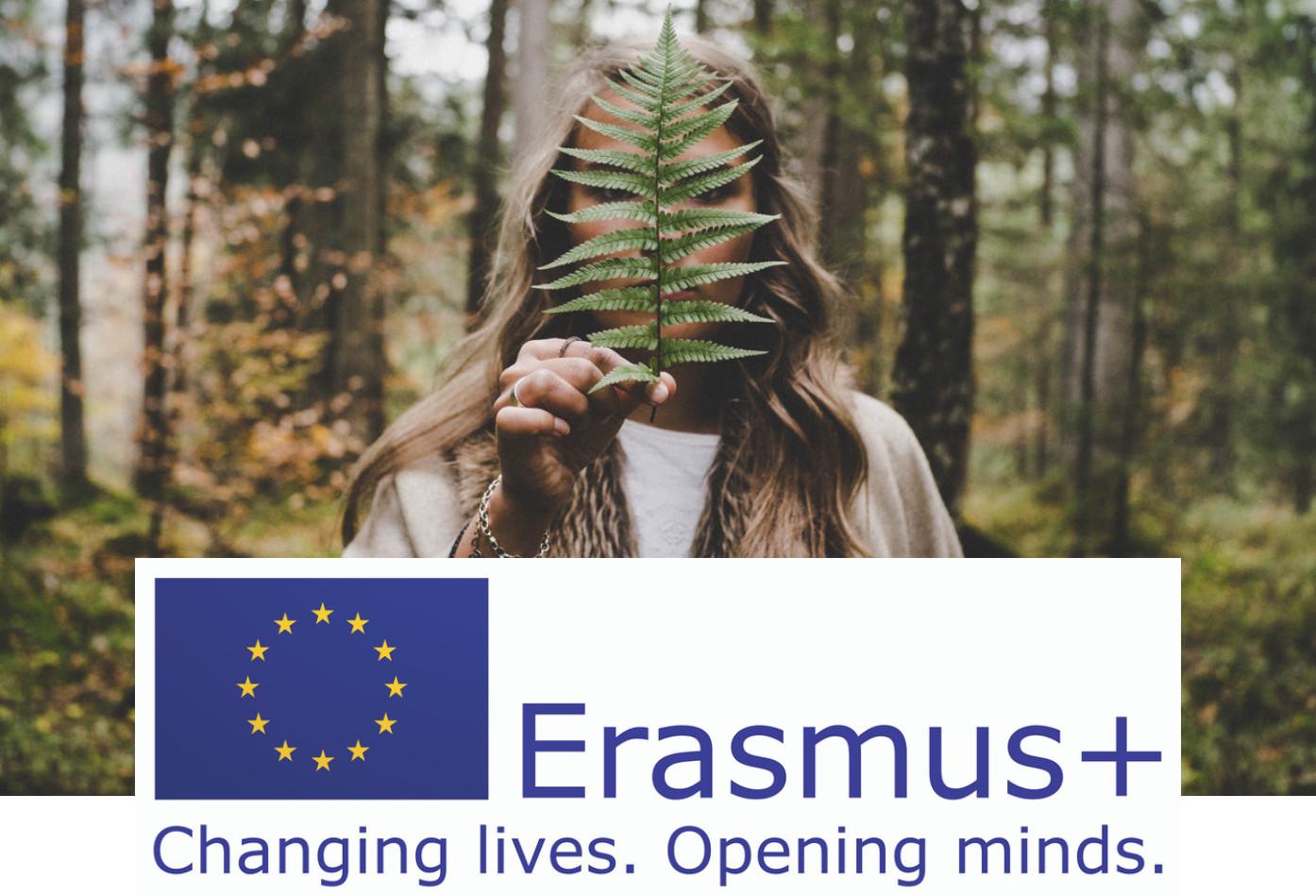 Corso di formazione a Gennaio in Romania dal 19 al 26.Tema principale : inclusione e multicultura