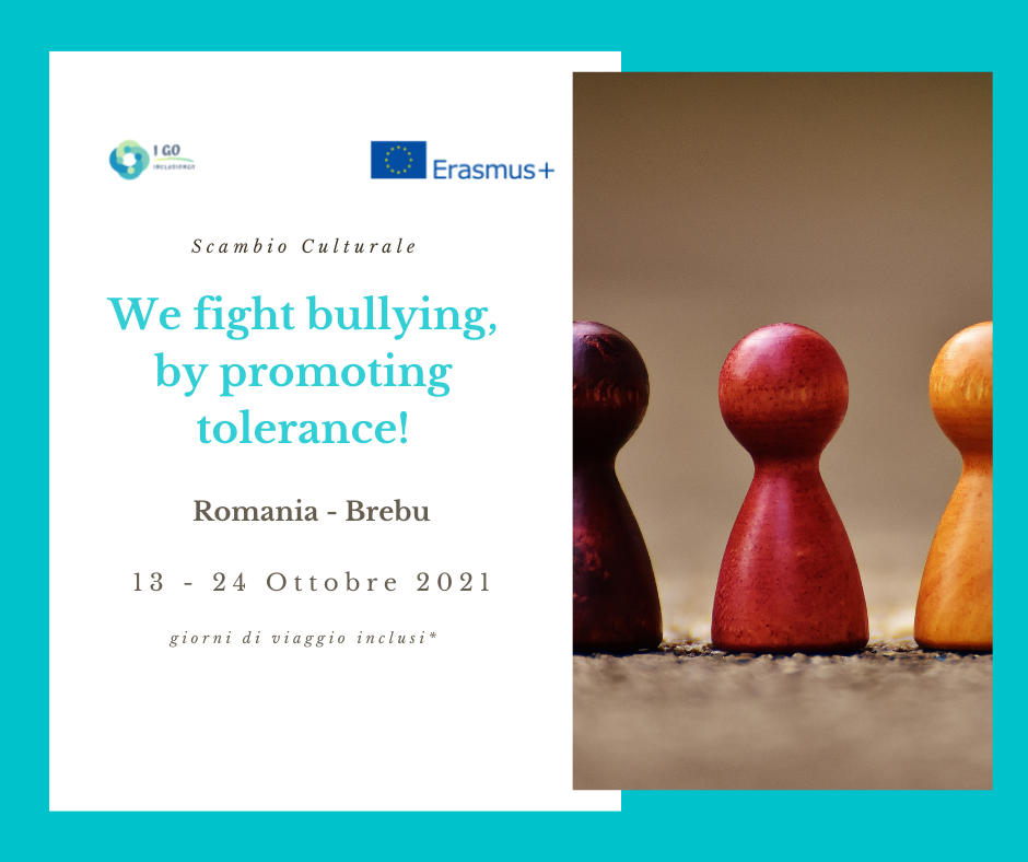 Scambio culturale in Romania – We fight bullying, by promoting tolerance