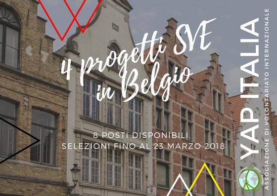 8 posizioni SVE in Belgio (18-30 anni)