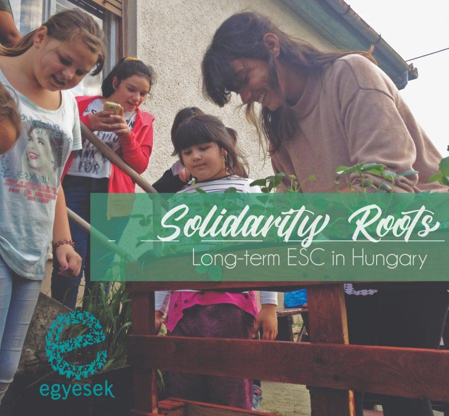 Solidarity Roots 2.0: 10 mesi in Ungheria